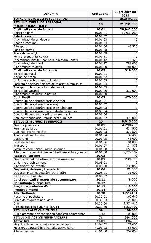 Bugetul de cheltuieli pentru anul 2019